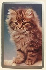Vintage Swap/Playing Card - SWEET TABBY KITTEN / CAT - Silver Border - Mint Cond