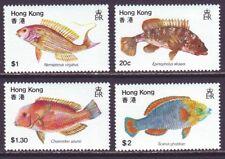Hong Kong 1981 SC 369-372 MNH Set Fish