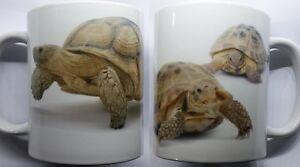 Tortoise Mug  Reptiles