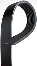 Serpentine Belt   Gates   K070505