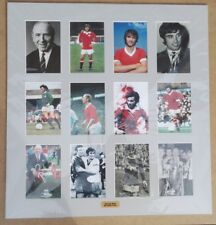 """GEORGE BEST  MANCHESTER UNITED NORTHERN IRELAND  SIGNED DISPLAY MOUNT 23"""" x 22"""""""