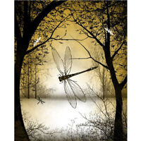Full Drill Diamond Painting Kit Like Cross Stitch Dragonfly in the Woods ZY144D