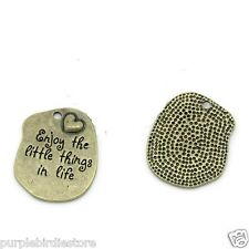 Bronze EnJOY the Little Things in LIFE Word Charms 33mm 2 Pieces S00535