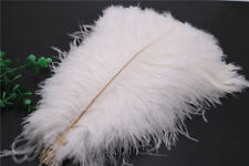 Wholesale 10-200 pcs high-quality natural ostrich feathers 6-24 inch/15-60cm
