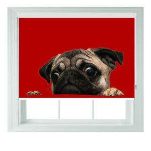 Pug Puppy Red Roller Blind Photo Printed black out roller blind various sizes