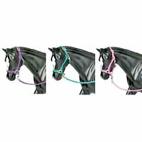 Nylon Halter with Lead Rope, Three Colors