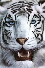 White Tiger (Tigre Blanco) Art Poster Print Poster Print, 24x36