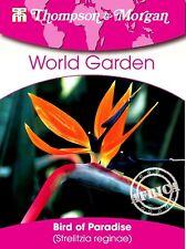 FLEUR OISEAU DU PARADIS - Strelitzia reginae, plantes d'intérieur, env. 4