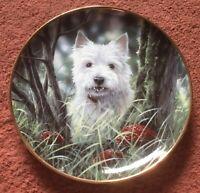 "Danbury Mint Paul Doyle Westies Plate ""Hide & Seek"""