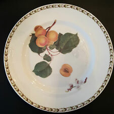 ROSINA-QUEEN'S HOOKERS FRUIT Fine Bone China SALAD PLATE (R.H.S.) PEACH NEW