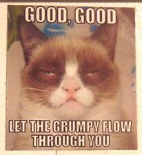 GOOD GOOD let the grumpy flow through you mood jedi force Grumpy Cat magnet