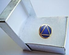 Alcoholics Anonymous AA Symbol Lapel Hat Vest Pin Recovery Sobriety Sober Token