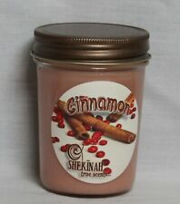 Cinnamon Jar Triple Scented Candle 8 oz Hand Made