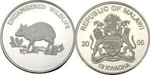 elf  Malawi 10 Kwacha 2005 Chevrotain  Proof  Silver Plated