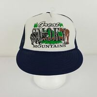 Great Smoky Mountains Vintage Baseball Trucker Cap Hat Navy Mesh Back Snap Back