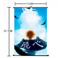 Hot Japan Anime Haikyuu!! Shoyo Hinata Shonen Home Decor Poster Wall Scroll 03
