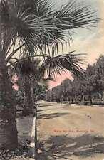 Monrovia California White Oak Ave Street Scene Antique Postcard K78935