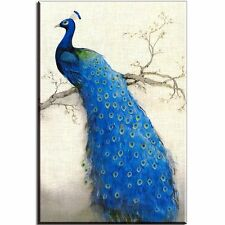 Canvas Wall Art Print Beautiful Peacock Painting Decor Picture Unframed