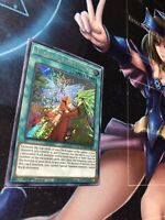 YuGiOh Adamancipator Friends - ROTD-EN061 - Secret Rare - 1st Edition Near Mint