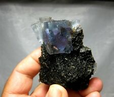 Fluorite on Sphalerite, Denton Mine, Hardin County, Illinois #fl130