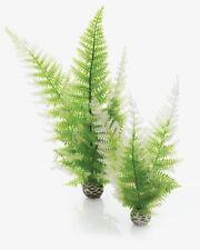 biOrb Easy Plant Winter Fern Medium 2pack