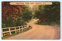 Vintage Linen Postcard Scenic Greetings From East Jewett New York NY