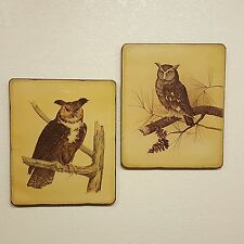 "2 Vintage E. Rambow Owl Art Prints Mounted on Wood Particle Board  19"" x 16"""