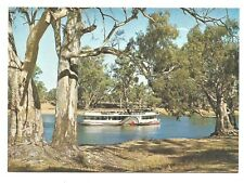 VIC - c1970s POSTCARD - PADDLE STEAMER ON THE MURRAY RIVER, ECHUCA, VICTORIA