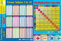 A2 / 2 in 1 Multiplication/Times Tables Poster / educational / learning / maths