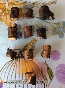 Comfrey Roots Organic X 10 (approx  1-2 cm each piece)   - Bocking 14 Variety