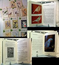 UCCELLI _ Ornitologia _ LE MONDE DES OISEAUX 27me année_1971_perruches, canari..