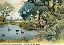 Norman Thelwell's Humourous Mounted Fishing Print - Brothers of the Angle