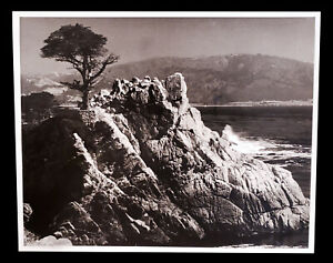 VINTAGE PHOTO PHOTOGRAPH CYPRESS POINT PEBBLE BEACH CALIFORNIA HENRY SCHIFFMAN