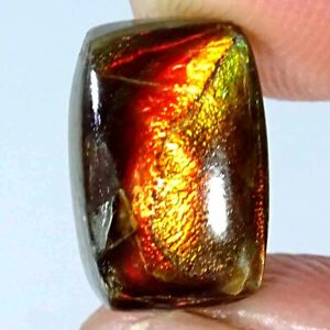 04.40Cts Natural Fire Ammolite Cushion Cabochon Loose Gemstone 09x13x4mm