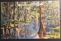 Vintage Postcard Middleton Garden Charleston S.C. Posted 1941  B56