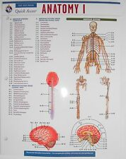 Anatomy 1 Fast Facts Review Quick Access REA Front/Back 2 Sheet Spread Laminated
