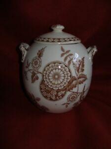 "Antique Transfer ware DEHLI Biscuit Jar with Lid white & Brown 5 3/4"" H, 5"" W"