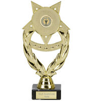 STAR OF THE WEEK AWARD GOLD SCHOOL TROPHY FREE ENGRAVING FG437 SS CO23