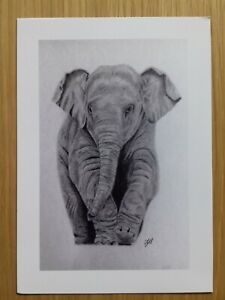 ELEPHANT CALFBaby PICTURE Unique A5 print of Original Art Gift WILD ANIMAL
