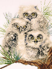 Cross Stitch Kit ~ Design Works Snow Owl Trio Family Perched on Branch #DW2781