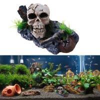 Aquarium Fish Tank Pirate Skull Skeleton Ornament Fish Tank Landscaping Decor