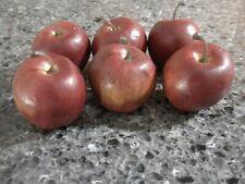 6 Longaberger Miniature Apples for Miniature Apple Basket-New-Realistic!