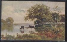 Postcard PERU Indiana/IN  Endicott & Nisbet Home Furnishing Store Promo Ad 1907