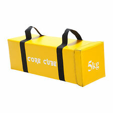 Core Cube Power Bag - Body Strength Crossfit MMA Fitness Training Aid - 5kg