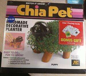 Chia Pet Puppy Pet Planter New In Box Handmade Decorative Planter