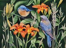 Blue birds orange flowers ACEO miniature limited edition KR art print signed