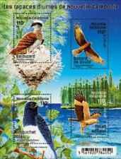 Timbres Oiseaux Rapaces Nouvelle Calédonie F1307 ** année 2017 lot 26704