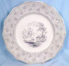 Antique Blue Transferware Plate Garden Scenery T J Mayer Longport 1843-55 Nice
