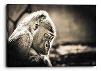 Gorilla Black White Old Ape Wall Art Picture Home Decor Giclee