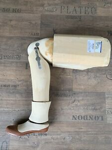 Beinprothese, linkes Bein, Holz, Pappelholz, Kniegelenk, Fuß